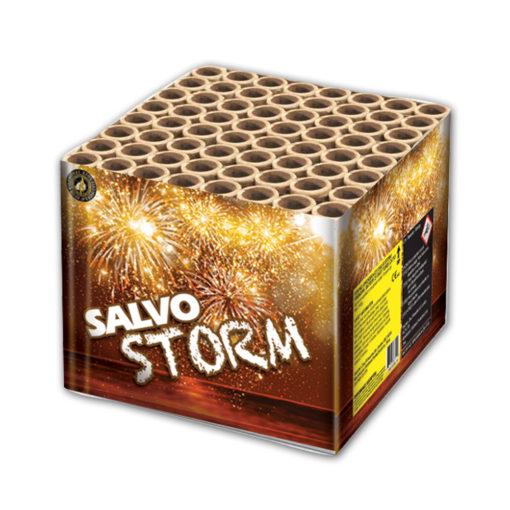Salvo Storm